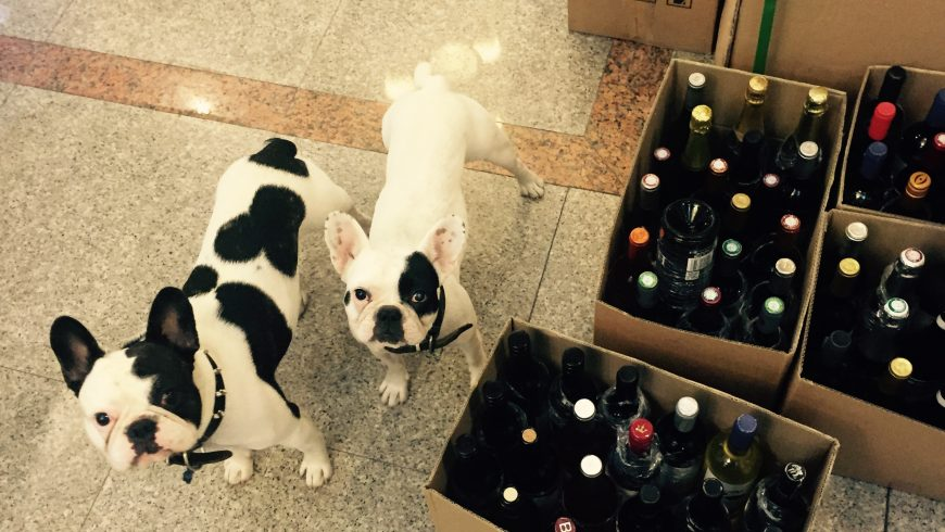 The Weekly Dog's Wine Review